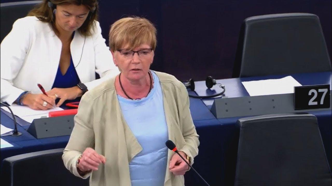 Απόσπασμα ομιλίας Γκαμπριελ Ζίμερ στην Ολομέλεια του Ευρωπαϊκού Κοινοβουλίου