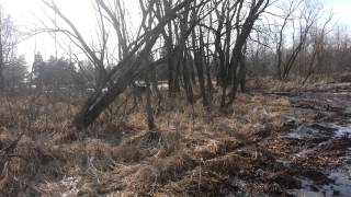 2. Mud running the Bennche bighorn 700
