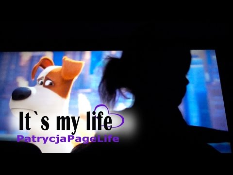 KINOTAG PETS- It's my life #687 | PatrycjaPageLife