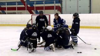 /Toronto Furies Hockey in the Neighbourhood Visit