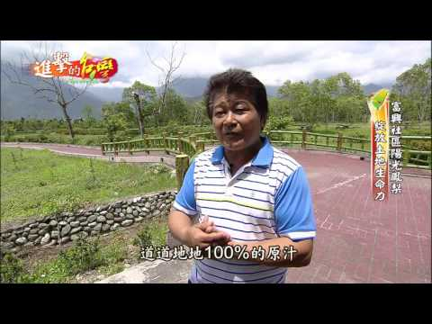 【新希望農村3】- 陽光鳳梨,農村土地的生命力(花蓮富興. 富源社區)