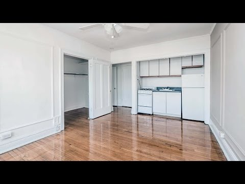 Sunny Lakeview East studios under $900 on a great block