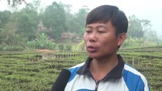 Mô hình thí điểm cắt cơn điều trị cai nghiện bằng phương pháp thuốc tại gia đình và cộng đồng tại Thái Nguyên...