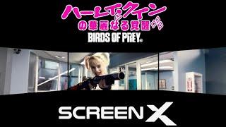 映画『ハーレイ・クインの華麗なる覚醒 BIRDS OF PREY』特別映像