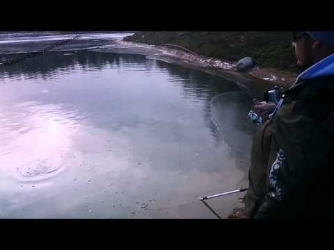 в веретьево платная рыбалка