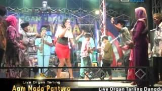 Kelambu Biru - Aam Nada Pantura Live Rungkang (17-4-2016)