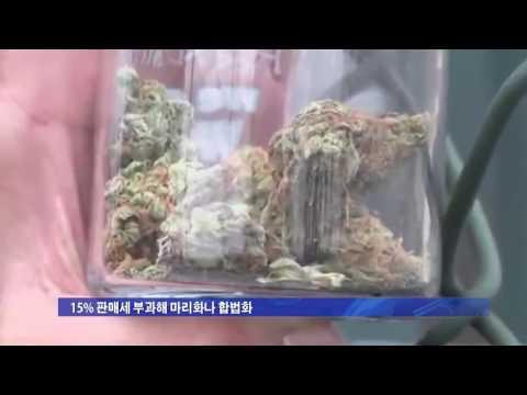 CA 마리화나 합법화 11월 투표 상정 6.29.16 KBS America News