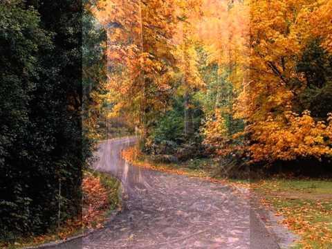 Красивая природа...Просто для души