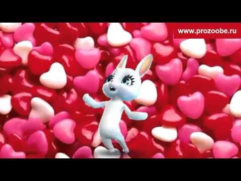 Поздравления с днем валентина-видео 48