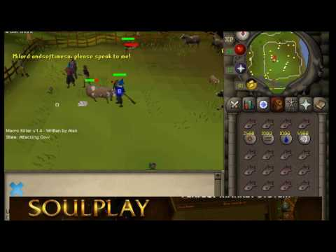 [OSRS] Bot to max stats S1E01