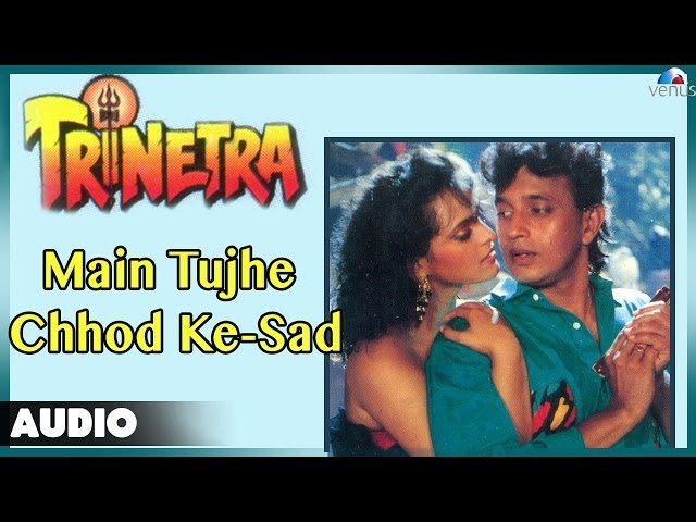 Trinetra Main Tujhe Chhod Ke Sad Part 2 Full Audio Song