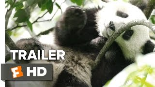 Nonton Born In China Official  Earth Day  Trailer  2017    Disneynature Documentary Hd Film Subtitle Indonesia Streaming Movie Download