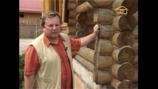 Дом из оцилиндрованного бревна - проблемы лаков