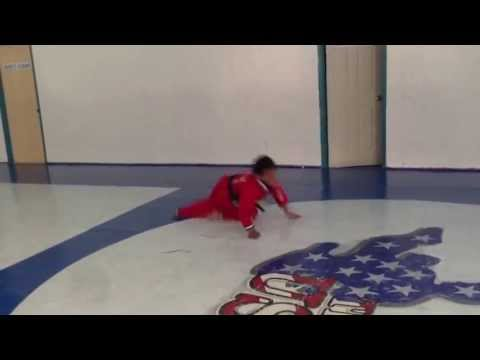 USA Martial Arts (Allerton)- Jason and Dixon flipping