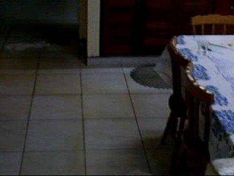 Terremoto em Cerquilho