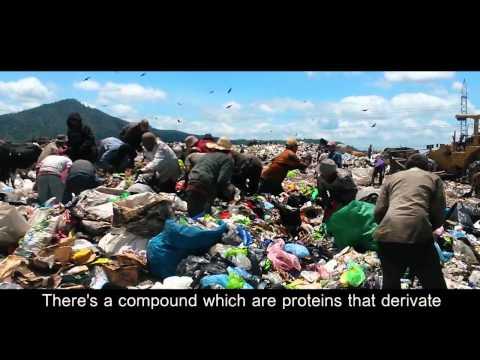 Trash dump in Honduras Research Documentary