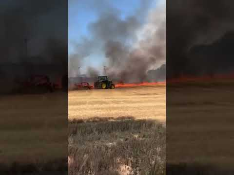 Wideo1: Pożar zboża pod Gostyniem