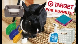 Things You Can Buy For You Rabbit at TARGET by Lennon The Bunny