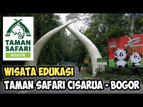 Safari Journey - Taman Safari Cisarua Bogor Indonesia