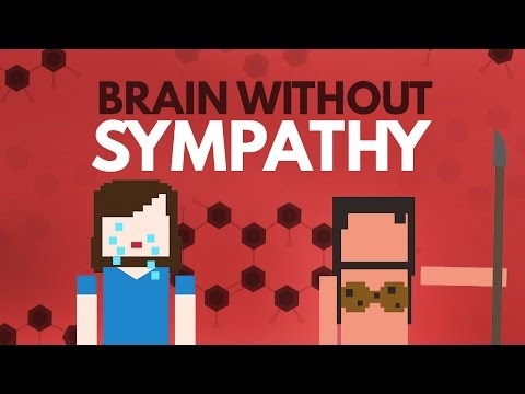 How Humans Developed a Sense of Empathy In Order to Get Along Well Within