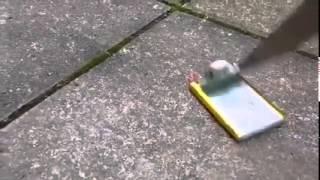 Explosion d'une batterie de téléphone