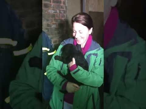 Tränen der Freude und Applaus für die Retter: Charly hat überlebt