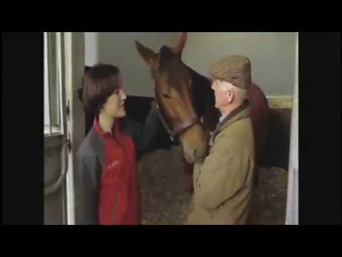 Sea The Stars - 2009 - Mr. John Oxx (trainer) (видео)
