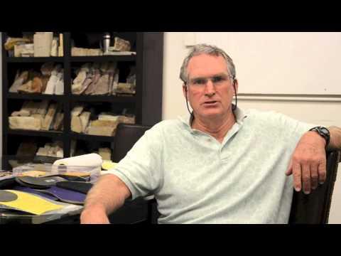 Rhintuff Diabetic Puncture Resistant Insoles