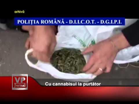 Cu cannabisul la purtator