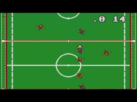 MicroProse Soccer PC