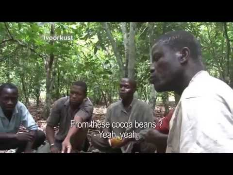 Ivory Coast cocoa bean farmers taste chocolate for the first time.