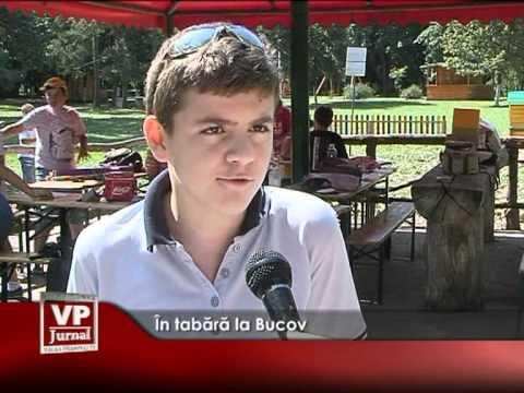 În tabără la Bucov