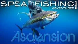 This amazing video is the result of two trips to Ascension Island, organized in 2015 by SPEARFISHING ADVENTURES in ...