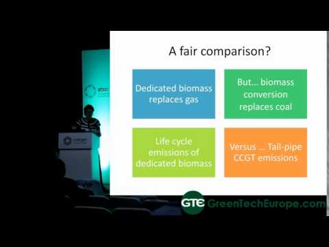 REA Presentation: Biomass policy