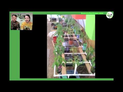 Video of Remote Garden