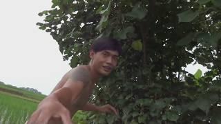 Video Berburu Musang yang Masih LIAR di Tengah Sawah MP3, 3GP, MP4, WEBM, AVI, FLV April 2019