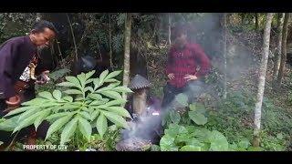 Video Ritual Penangkapan Ular, Dari Bakar Kemenyan Sampai Pakai Pusaka! | PAWANG Eps. 1 (2/3) GTV 2018 MP3, 3GP, MP4, WEBM, AVI, FLV Februari 2019