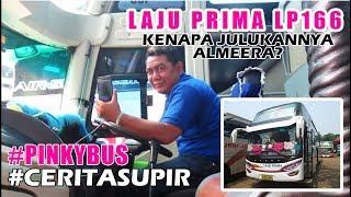 Video #CERITASUPIR Bersama Driver LP166   LAJU PRIMA ALMEERA LP166   Kondisi Agen Bus Ciledug MP3, 3GP, MP4, WEBM, AVI, FLV Oktober 2018