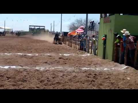 Louro vaqueiro do poço José de moura