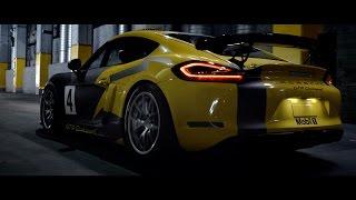 Cecotto in Porsche GT4