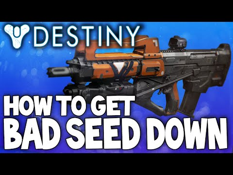 setup - The Bad Seed Down Weapon Review & Best Setup! If You Enjoyed The Video, Consider Leaving A LIKE :) Thanks. Follow me on Twitter: https://twitter.com/dpjsc08 Hey guys, in todays video we are...