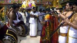 Day 12  The Maha Annual Festival Nadaswaram Performance By:  Manikandan Brothers  07-06-2012