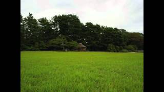 Goldberg Variations, BMV988 Theme. Aria Glenn Gould