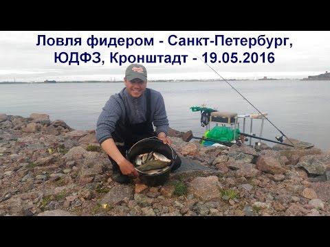рыбалка на дамбе спб места