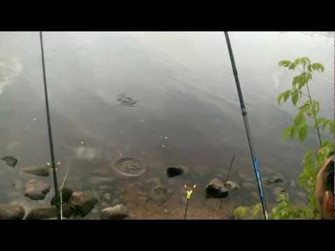 рыбалка в городе дубна видео