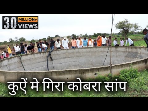 Dangerous Rescue Operation | Rescue indian cobra snake in the well from Ahmednagar maharashtra