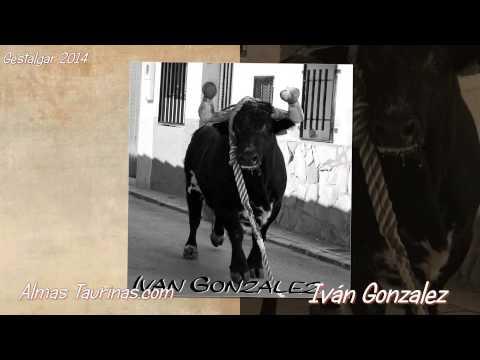 GESTALGAR febrero 2014 imagenes de Iván Gonzalez.