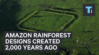 Designs in the Amazon rain forest were created 2,000 years ago!