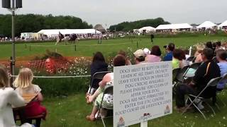 Video Riding horses at Lincs Show MP3, 3GP, MP4, WEBM, AVI, FLV Juli 2018
