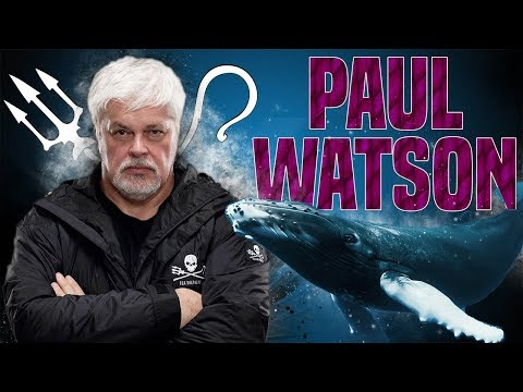 Le Pirate des Océans, Paul Watson. TeaTime (видео)